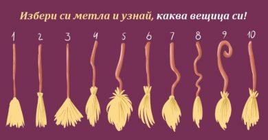 ТЕСТ: Избери си метла и виж каква вещица си