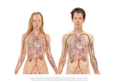 Признаците, че имате задръстен черен дроб